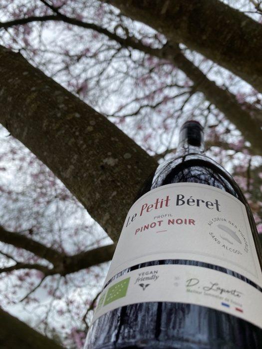 Vin rouge sans alcool cave de malory josselin